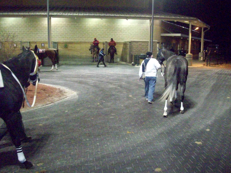 Horse Races: Horse Races Penn National