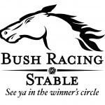 bushracing_tagline_logo1
